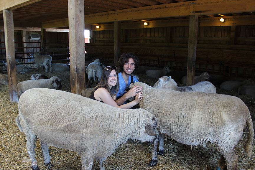 Justin Plus Lauren at Farm Sanctuary - Watkins Glen, NY