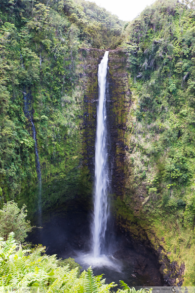Akaka Waterfalls by TheTalkingTrails